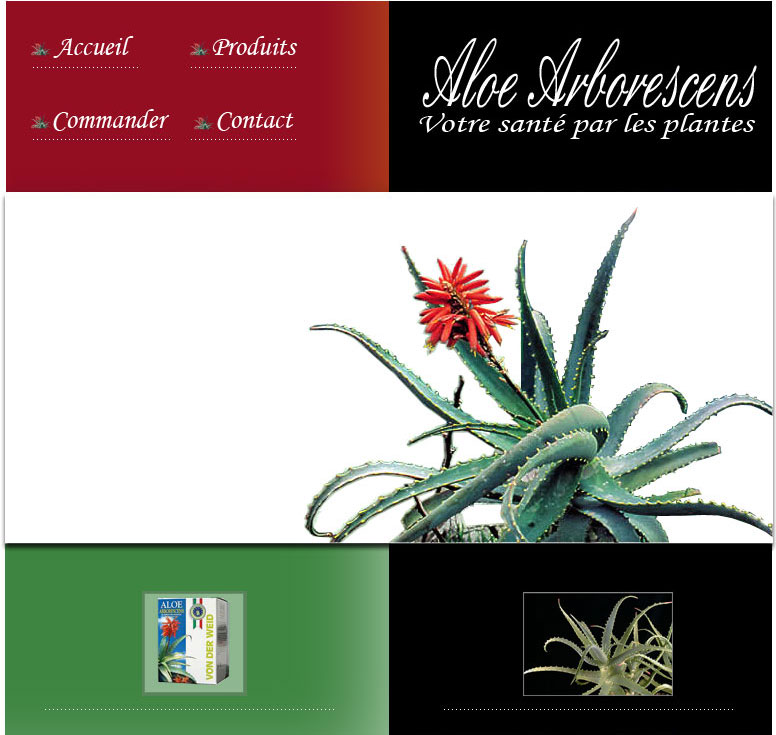 aloe arborescens plante vente acheter trouver achat aloe. Black Bedroom Furniture Sets. Home Design Ideas